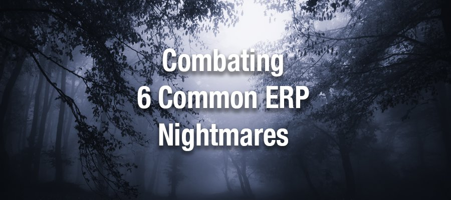 Combating 6 Common ERP Nightmares